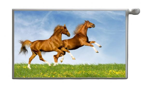 HORSES Magnetic Radiator Cover